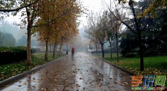 写冬天的雨作文大全_描写冬雨的作文