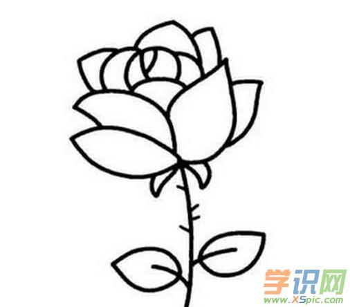 手绘玫瑰花简笔画图片 简笔画玫瑰花的画法