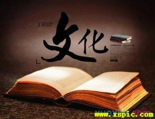 中國傳統文化優秀作文5篇