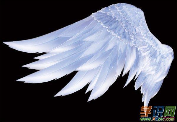 以翅膀为话题的作文600字_以翅膀为话题的作文600字4篇