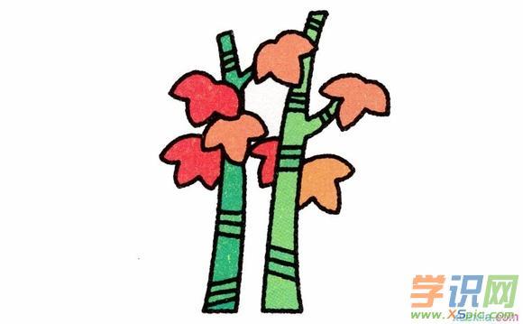 幼儿画画入门枫树简笔画步骤