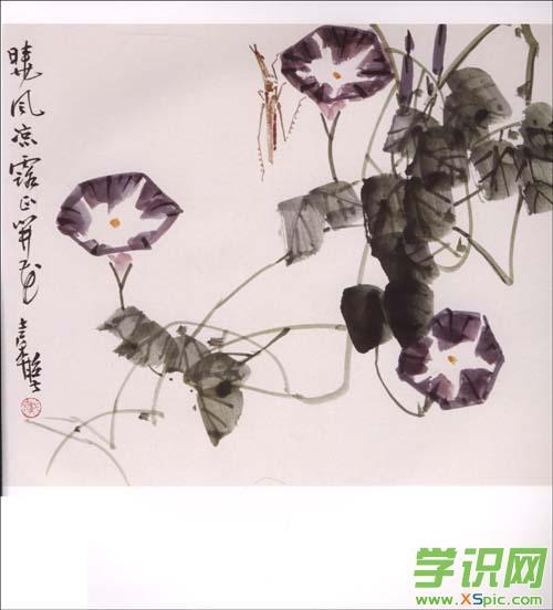 关于中国画牵牛花的图片大全