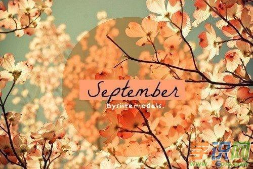 描写樱花的唯美句子|描写九月的唯美句子 赞美九月唯美文字语句