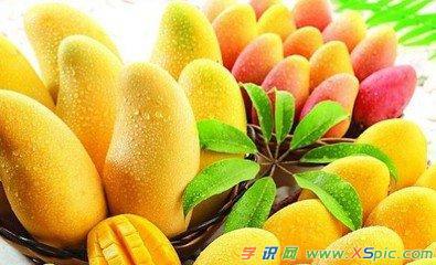 孕妇能吃芒果吗 孕妇可能吃芒果吗