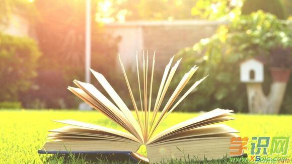 【一本珍贵的书作文500字】一本珍贵的书作文500字范文5篇