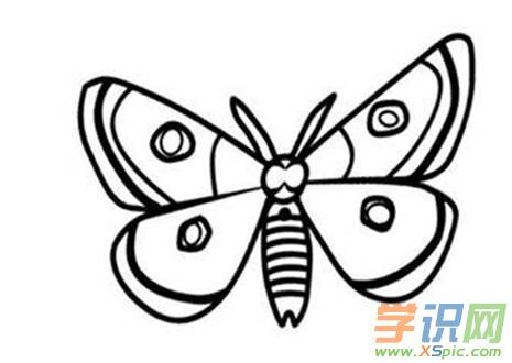 儿童蝴蝶画简笔画大全 美丽的蝴蝶简笔画图片