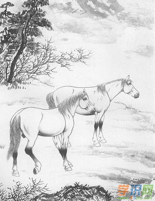 学识网 爱好 学画画 工笔画     动物马经训练后成为人类最好的助手之