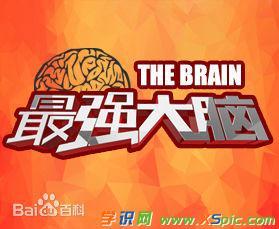 《最强大脑》栏目简介