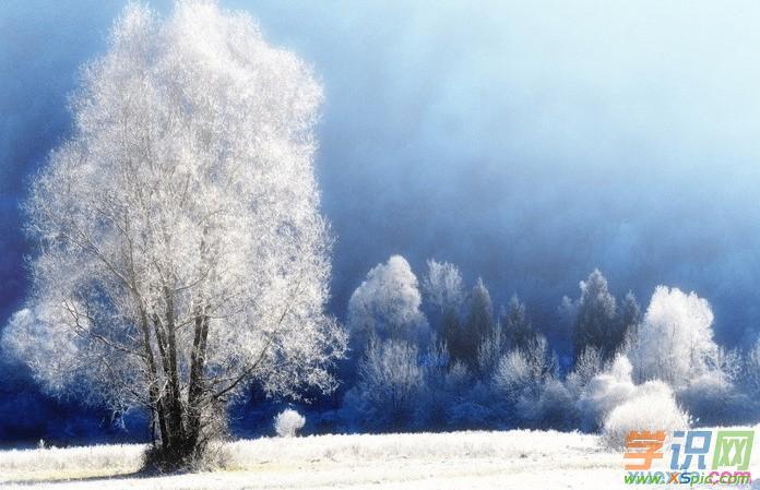 冬天来了的作文500字 描写冬天来了的作文