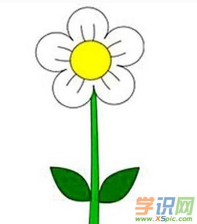 卡通花朵简笔画 花朵的简笔画