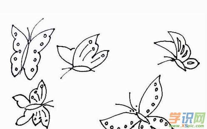 可爱小蝴蝶简笔画_蝴蝶的简笔画图片大全