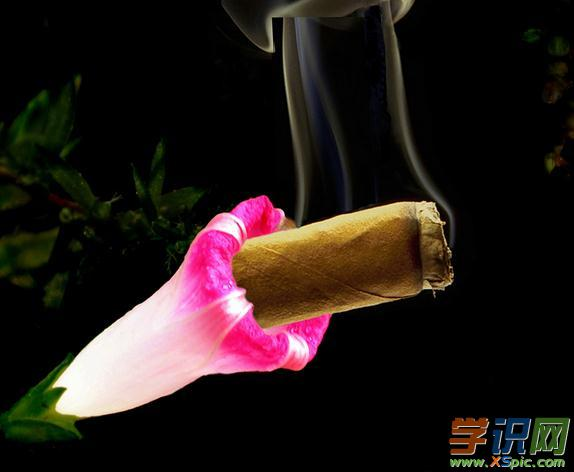 无烟日活动主持词