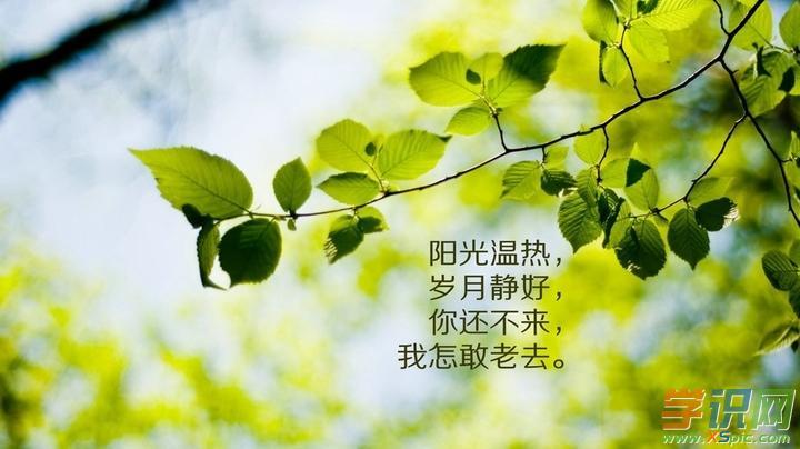 人生感悟的句子简短的