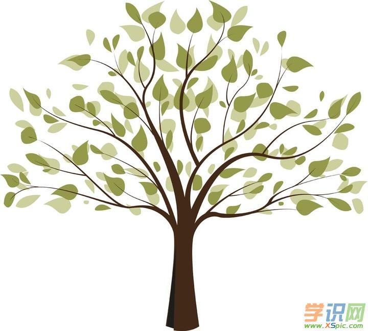 初中生描写树木的优秀范文600字