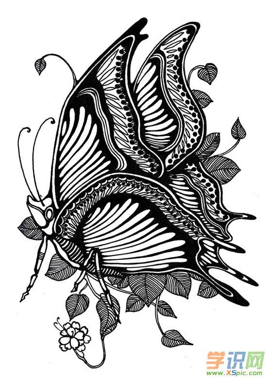 蝴蝶装饰画图案_黑白装饰画图片大全