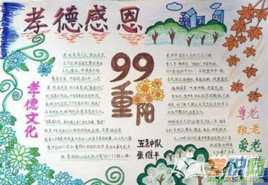 令人目不暇接的秋菊,一朵朵,点缀着重阳节,重阳节手抄报 也是重阳