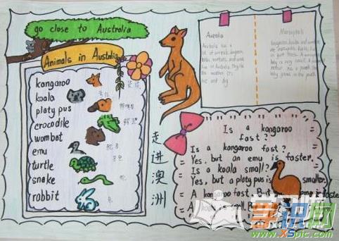有关动物的英语手抄报图片