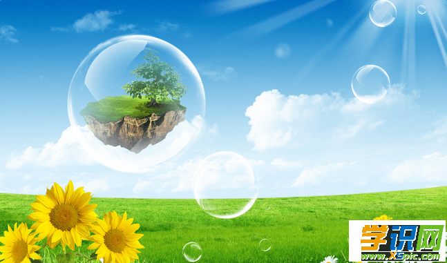 保护环境优秀演讲稿范文500字