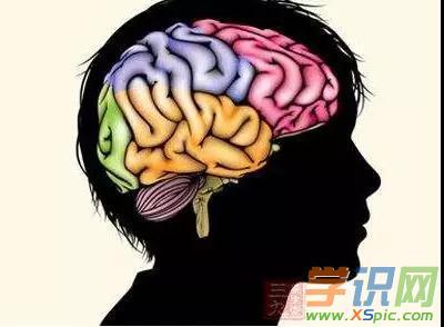 如何在游戏中开发大脑