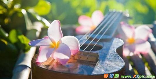 """音乐教师教学反思周记范文:尤克里里与""""小魔王""""们"""