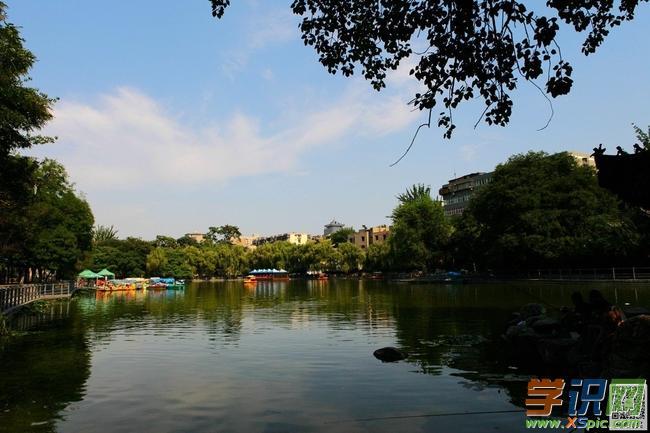 有关写莲湖的抒情诗歌:爱在莲湖