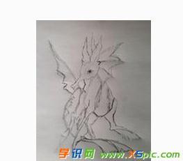 海洋生物的铅笔画图片