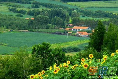 赞美家乡的优秀澳门葡京网址:让我们的家乡更美