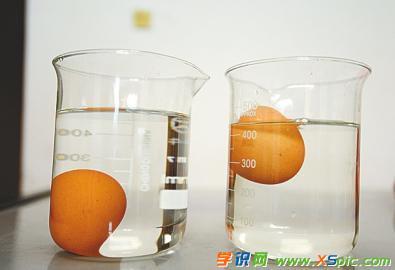 有关鸡蛋实验的澳门葡京网址:鸡蛋浮起来了