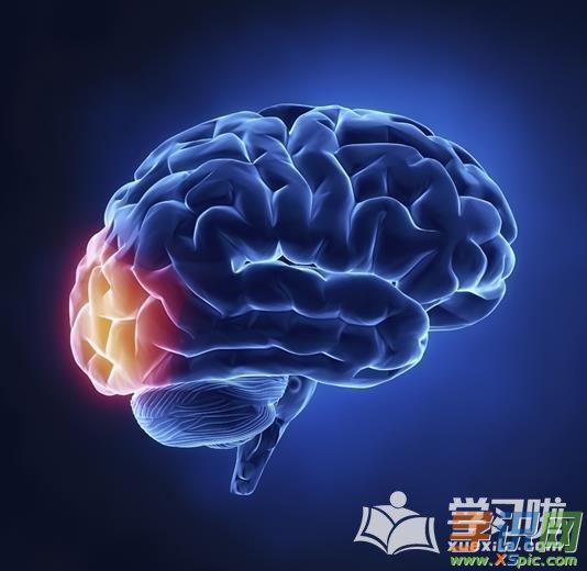 锻炼记忆的方法有哪些