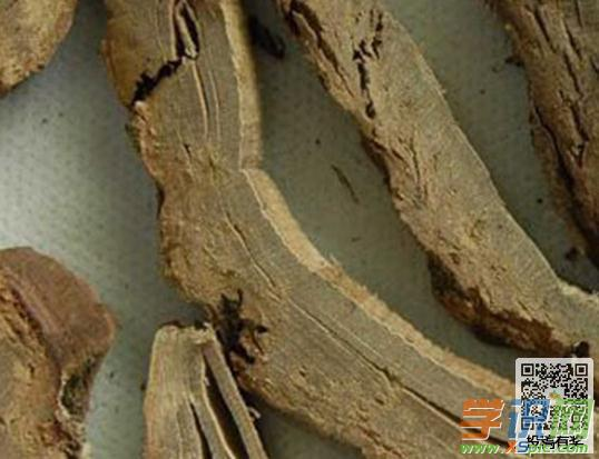 养生知识 健康饮食 功效作用     海桐皮,药用部分为豆科植物刺桐的干