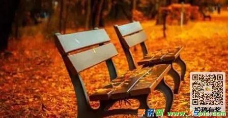 关于冬天的风故事作文:落叶