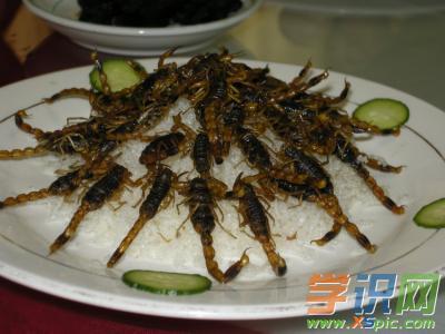 关于吃蝎子的澳门葡京网址:第一次吃蝎子