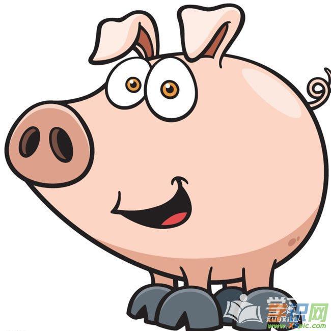 小猪的颜色有很多,有红的,黑白相间的,红黑相间的…&hellip