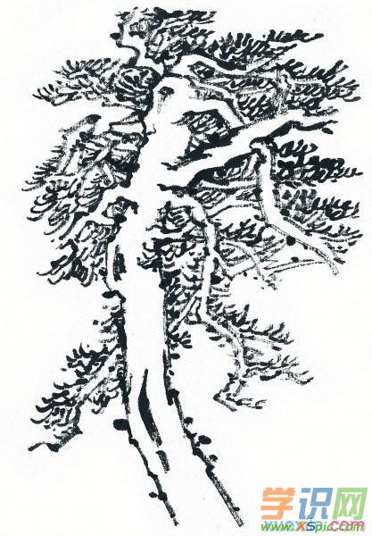 水画松树的画法