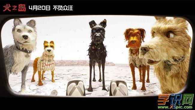 电影《犬之岛观后感:犬族的逆袭