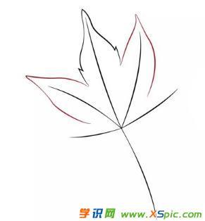 枫叶的画法步骤简笔画绘画教程