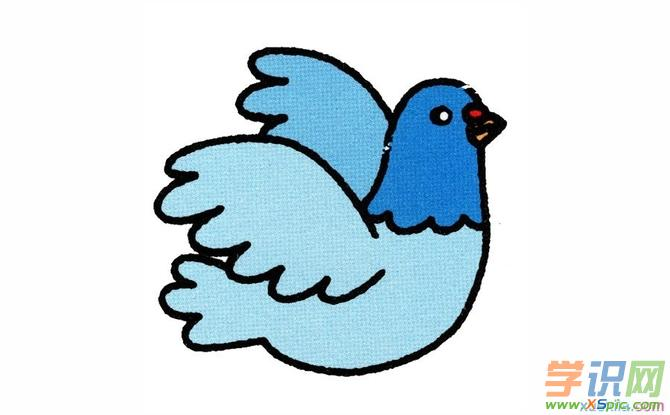 彩铅动物画鸽子教程