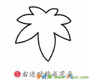枫叶的画法步骤简笔画教程