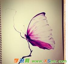 简单彩色铅笔画蝴蝶的图片欣赏