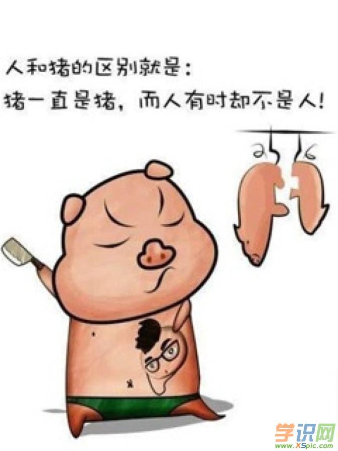 2017猪可爱漫画图片欣赏