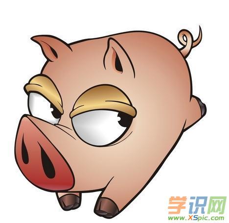 关于小猪漫画图片可爱