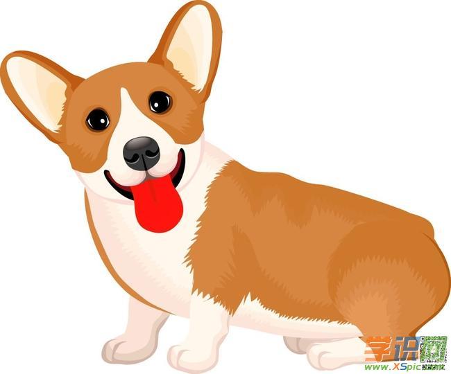 二年级描写喜欢的小动物作文:可爱的小狗