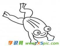 青蛙的简笔画图片欣赏