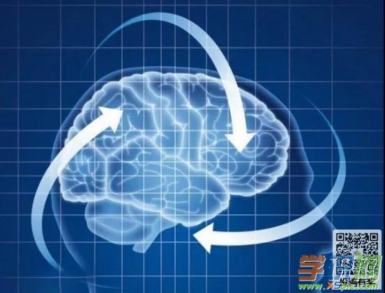 大脑是如何记住事物的