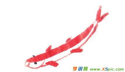 小鱼的画法步骤国画绘画教程