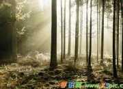中国古代寓言故事ppt内容