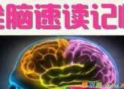 全脑速读真的有效吗