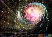 右脑图像记忆的基本原理是什么