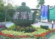 深圳茶溪谷游记作文范文600字