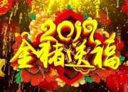2019年春节联欢晚会400字作文